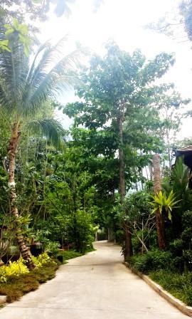 Thailand Ananta Thai villas tropical surroundings