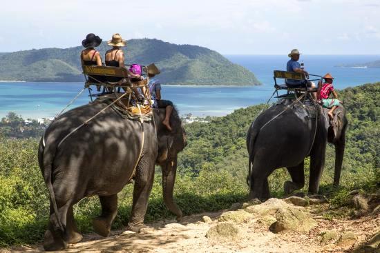 Thailand Siam Safari