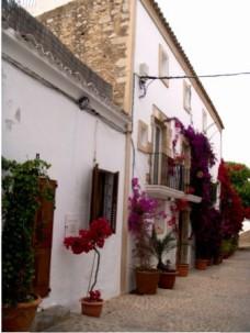 Ibiza Dalt Villa (7)