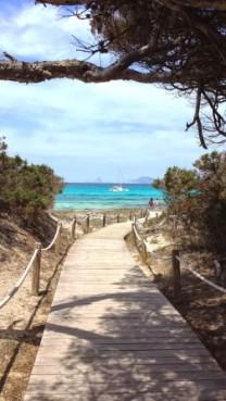 Ibiza daytrip Formentera (6)
