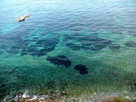 Ibiza's beaches (6)