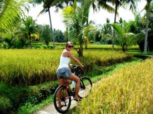 Bali mountainbiking Ubud