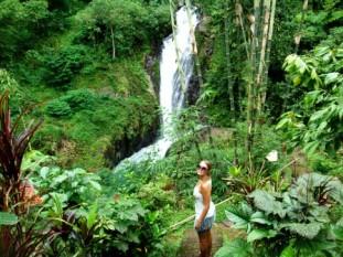 Bali Twin falls