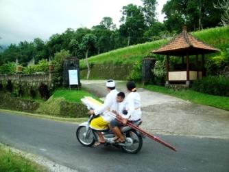 Balinese life