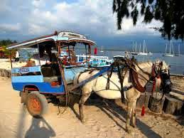 Gili islands horsecars