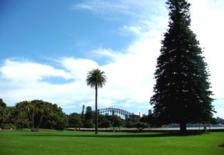 Australia Sydney Harbour bridge view