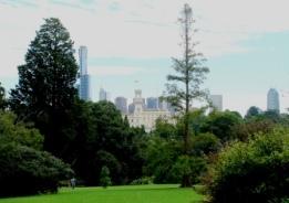 Melbourne botanical gardens view