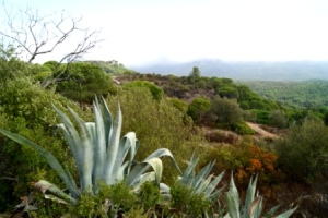 Arrábida National Park