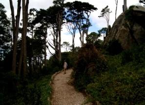 Portugal Pena National Park