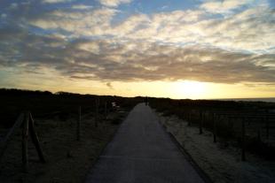Dunes of Kijkduin
