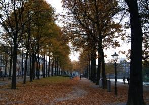 The Hague Hofvijver park