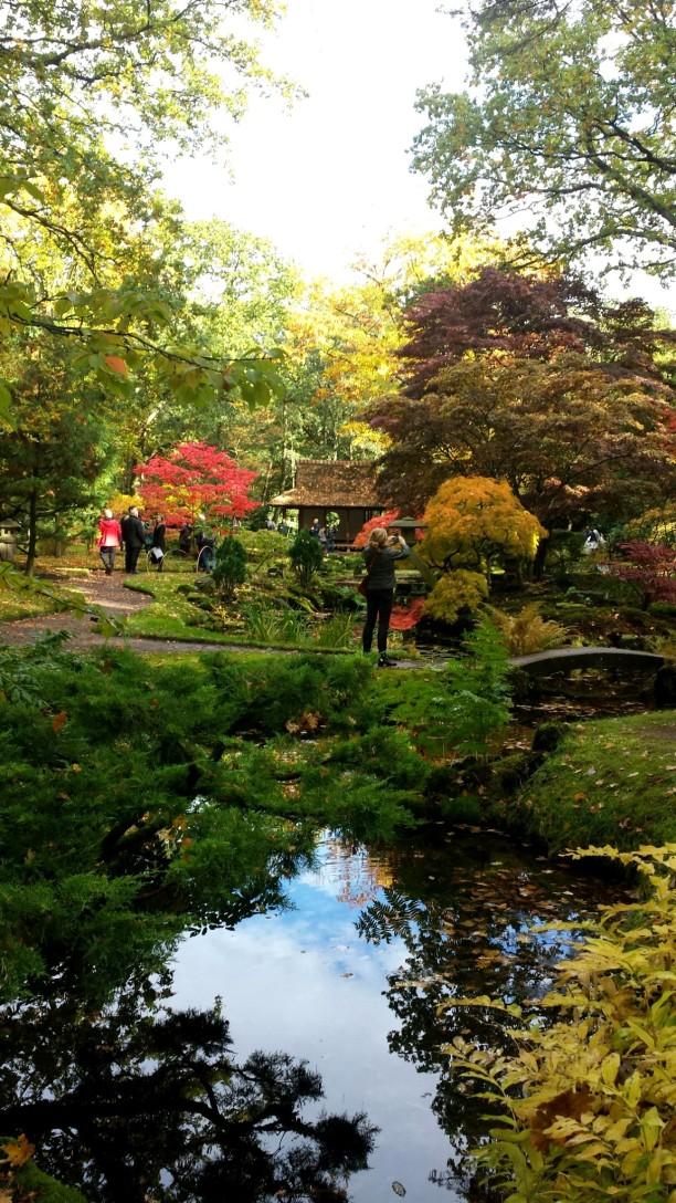 Clingendael's Japanese Gardens
