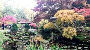 The Hague Japanese Gardens