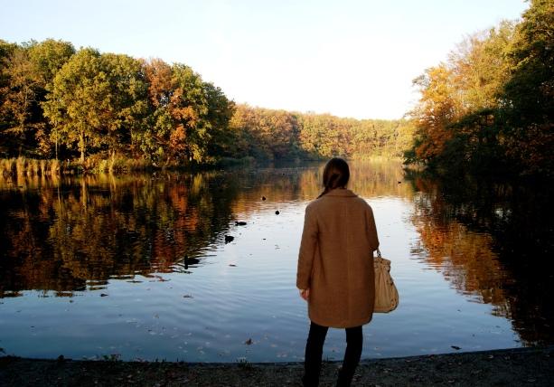 Lakes of het Haagse Bos