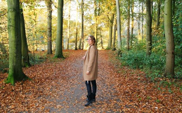 Wonderful stroll through het Haagse Bos