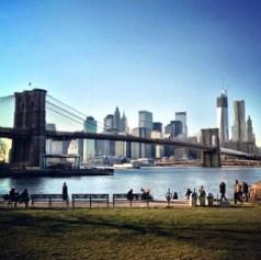 NYC Brooklyn Bridge Park view