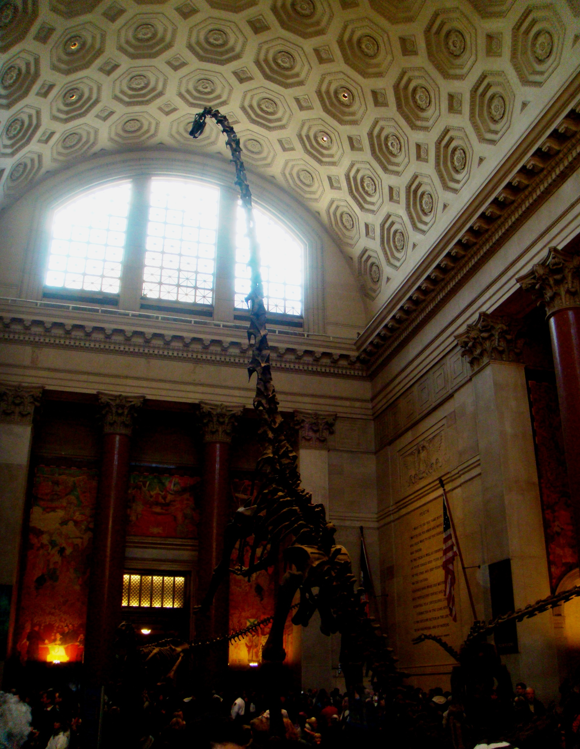 NYC Museum of Natural History main lobby