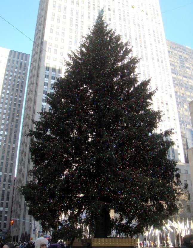 NYC Rockefeller center tree