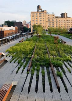 NYC the Highline