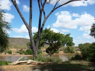 Kenya Galdessa lodge river view