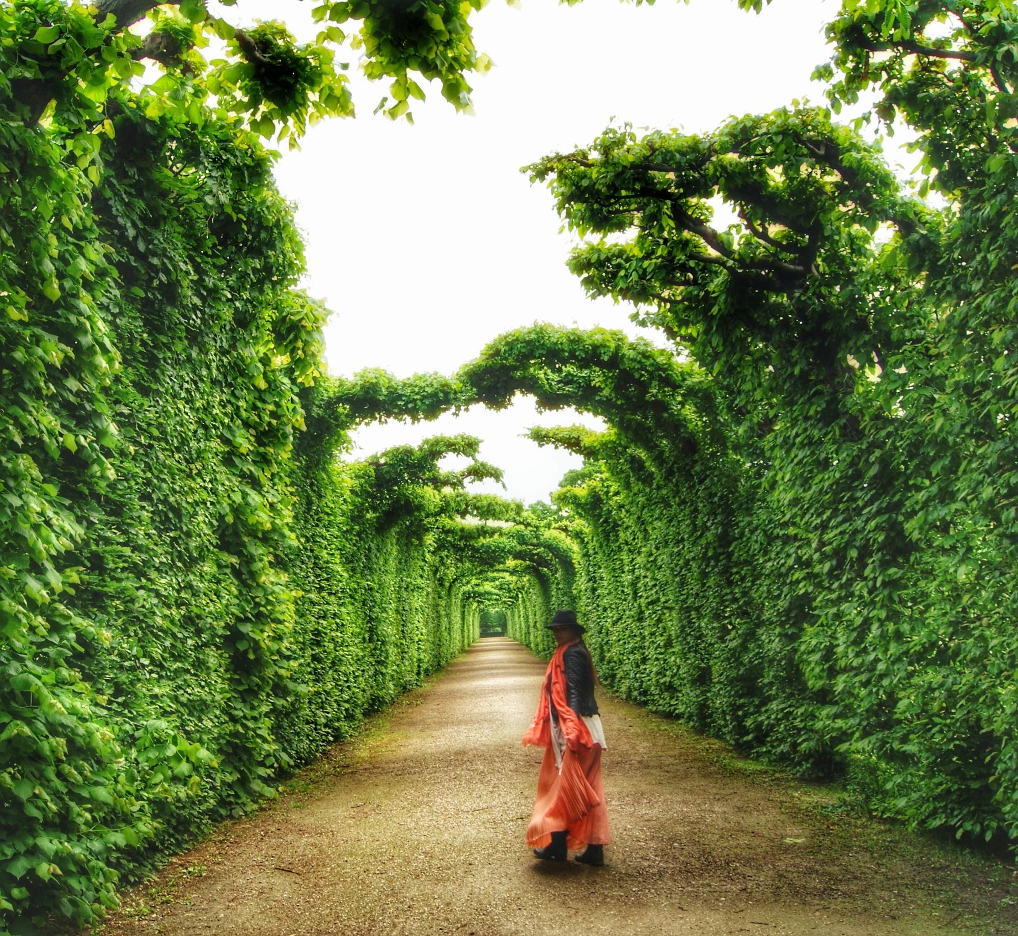 Inside the gardens of Schloss Schonbrunn Vienna