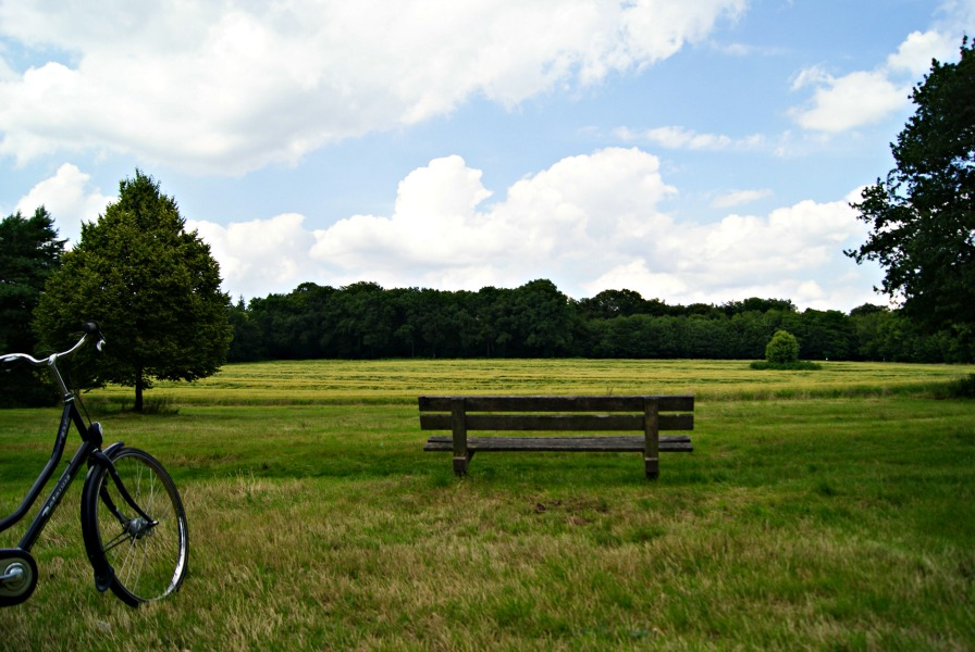 Cycling on the Dutch Veluwe (1)