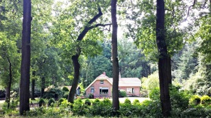 Dutch farmhouses on the Veluwe (3)