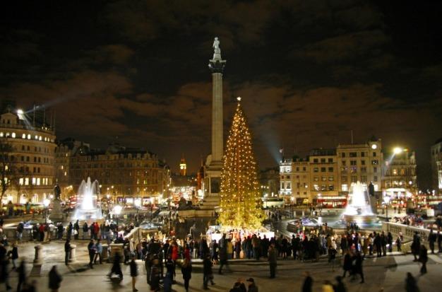 london-trafalgar-square-xmas-tree