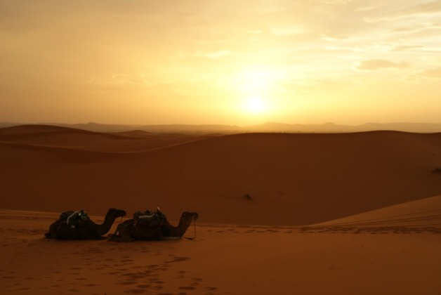 sunset-in-the-sahara-of-morocco-4